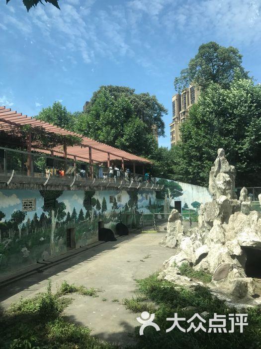 成都动物园图片 - 第8张