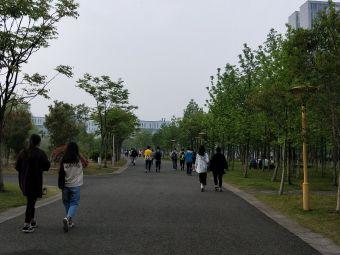 宁波财经学院(杭州湾校区)