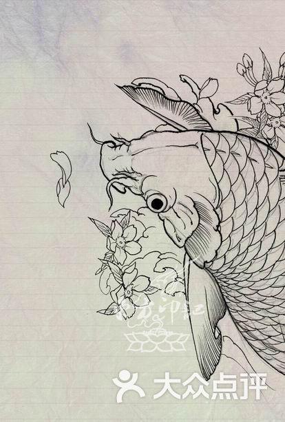 鲤鱼线条手稿——北京最大的纹身店图片
