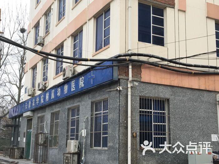 天津农学院附属动物医院图片 - 第2张
