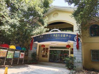 马荣教育国际幼教中心(丽景湾中心)