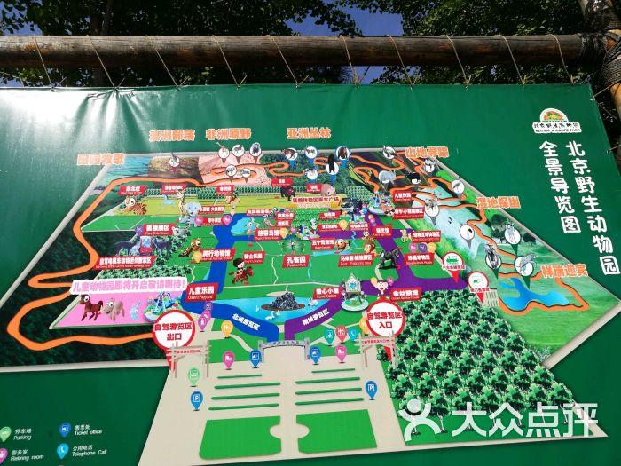 北京野生动物园图片 - 第2640张