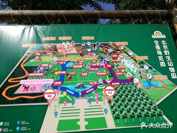 北京野生动物园图片