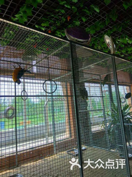 光合谷动物园图片 - 第8张
