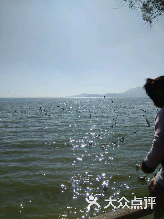海埂美食-图片-昆明周边游成都儿童画大坝图片