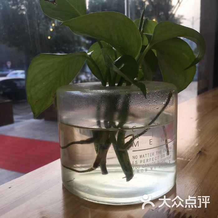 植物手工制作大全图片熊猫