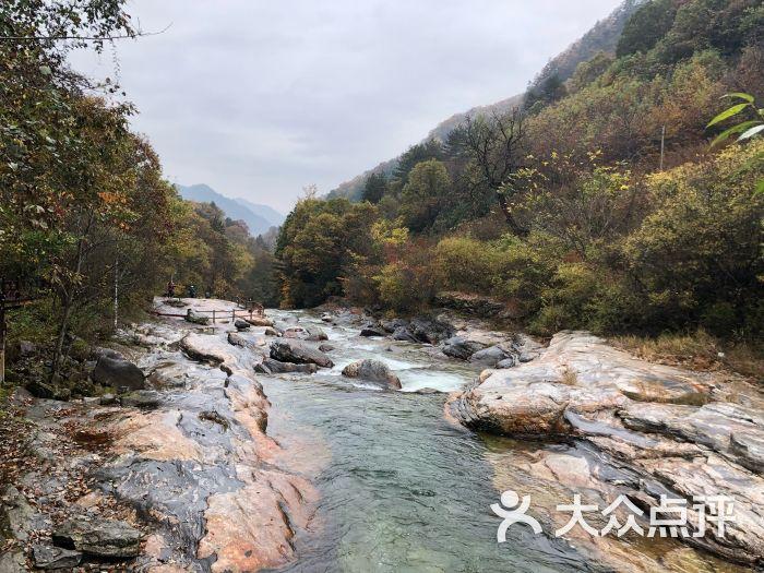 黄柏塬原生态风景区-图片-太白县周边游-大众点评网
