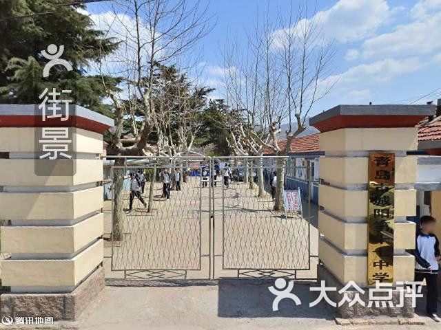 青岛市城阳第十七中学周边街景-1图片 - 第1张