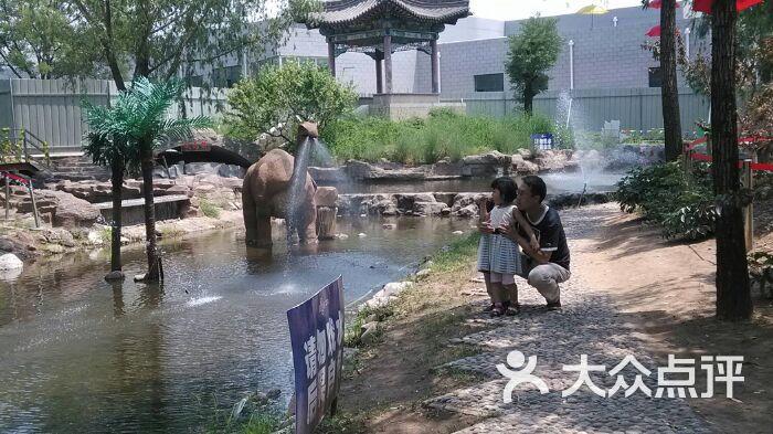 太原动物园恐龙世界图片 - 第3张