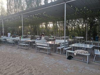 365沙漠露营基地