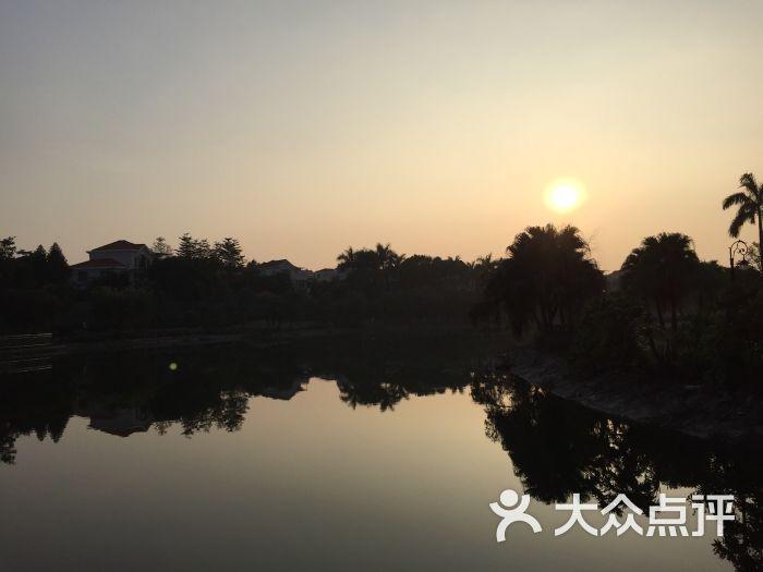 鹤山碧桂园凤凰酒店(鹤山店)-图片-鹤山市酒店-大众