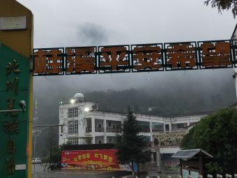 桂溪乡中心小学