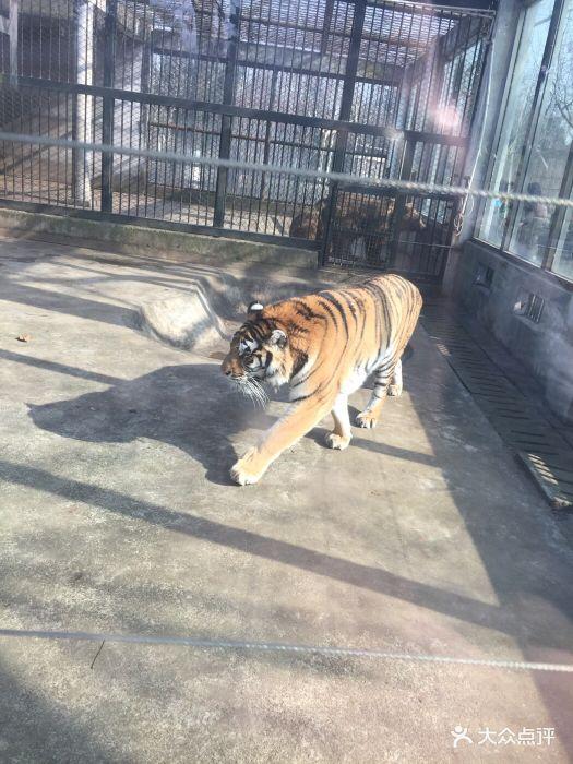 泰州市动物园图片 - 第170张
