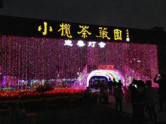鹤山国际梦幻灯光节