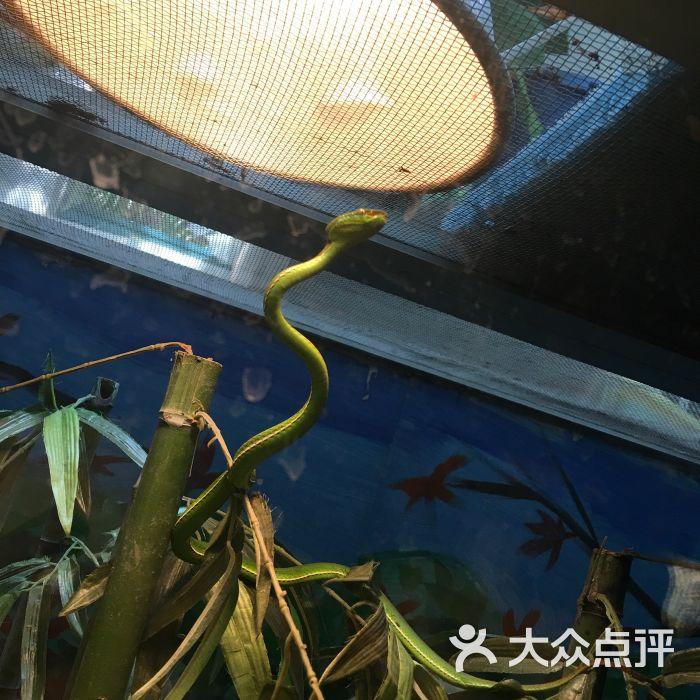 杭州动物园图片 - 第17张