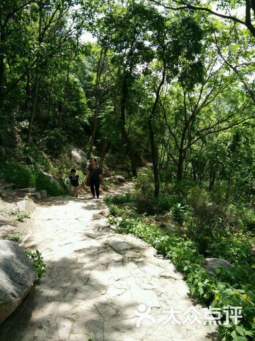 松山国家森林公园-图片-延庆区周边游-大众点评网