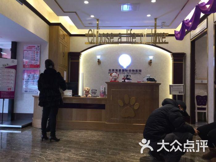 宠爱国际动物医院(大成路店)前台图片 - 第14张