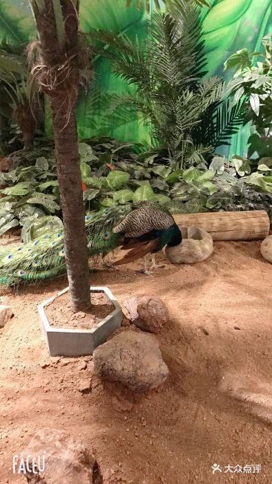 天津zoonly动物主题公园图片 - 第2711张