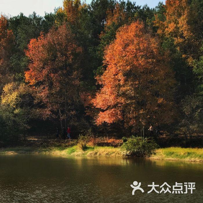 黄陂木兰胜天农庄风景区图片 - 第1张