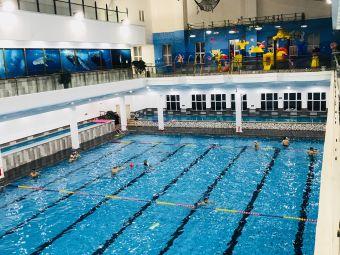 潜水培训基地(U生活游泳健身)
