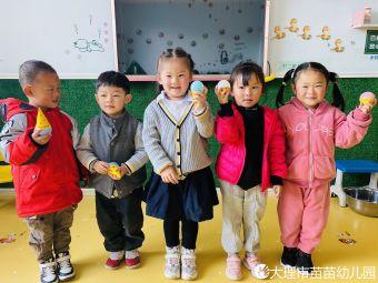 苗苗双语幼儿园