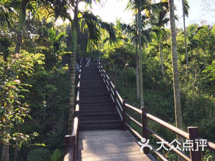 三亚抱龙森林公园生态别墅酒店图片 - 第1张