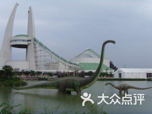 中华恐龙园 26图片 常州景点