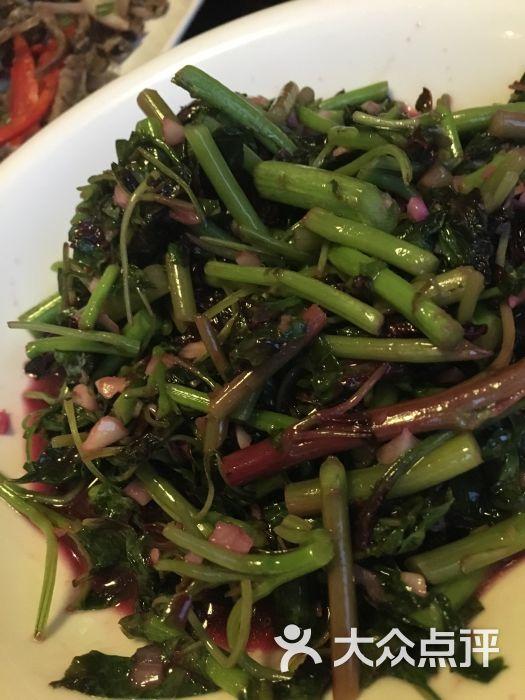 乡味浓浓餐厅特色-美食-龙游县图片-大众介绍网天津点评都店的探美食小店图片