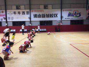 我赛尔篮球训练中心(乐从校区)