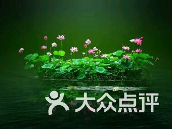 上海星易商务咨询有限公司
