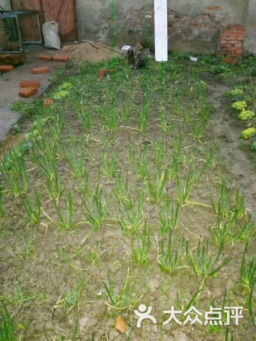 金寨土吊锅-图片-霍邱县过程-大众点评网制作美食复杂的美食图片