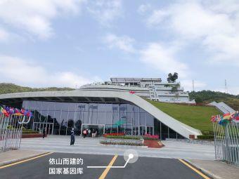 深圳市华大基因研究院