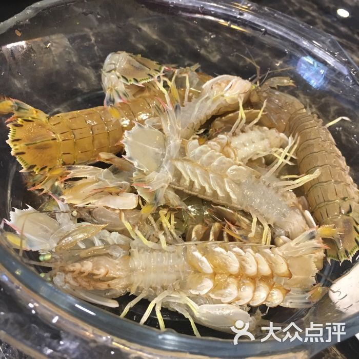 活海鲜铜火锅虾婆图片 - 第7张