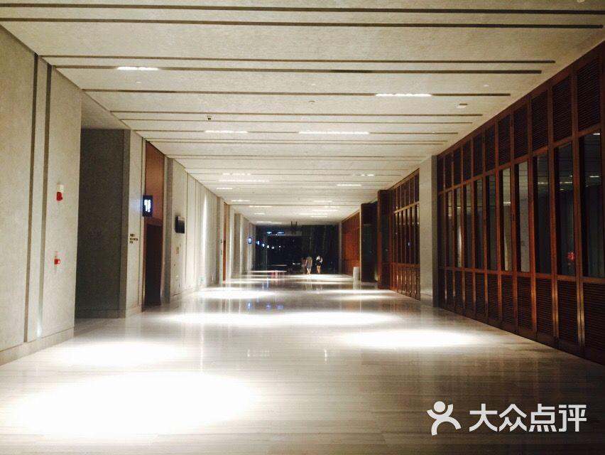 红树林国际影城图片 - 第150张