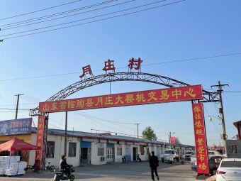 临朐县月庄大樱桃交易市场