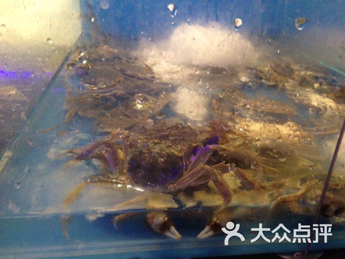 蓝鲨美食自助团购汇-海鲜-邯郸美食-玉环点评网美网团美食大众图片图片