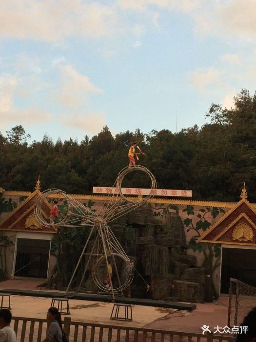 贵阳森林野生动物园-图片-修文县周边游-大众点评网