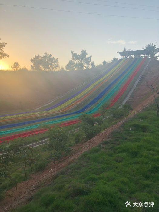 香草世界森林公园-滑草图片-南雄市周边游-大众点评网图片