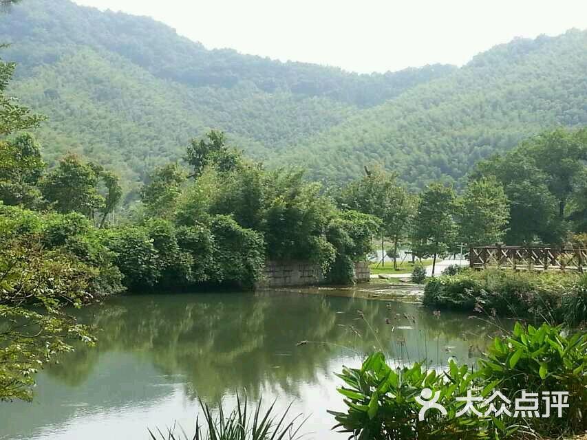 天童国家森林公园图片 - 第55张