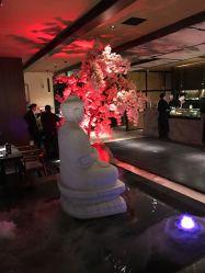 上井八泽精致料理(曲江店)-紫兰卿的相册-西小队美食名称图片