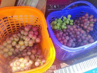 憨哥葡萄庄园