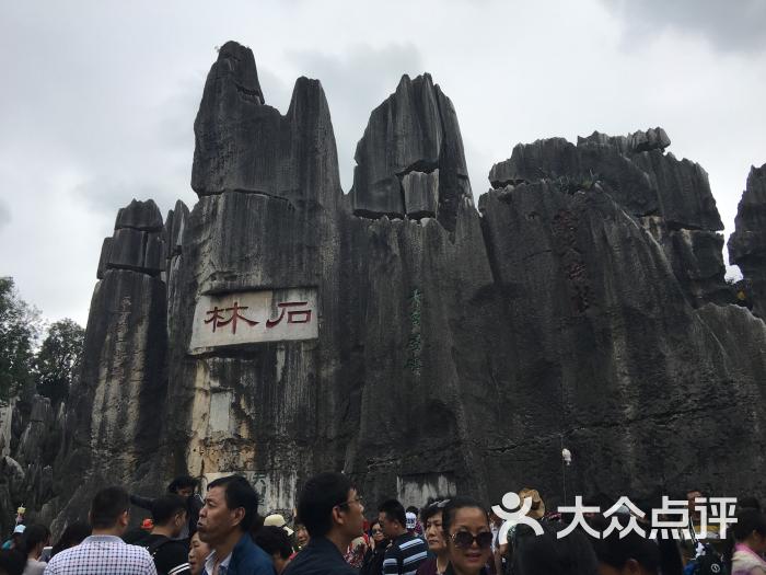 石林风景区-图片-石林彝族自治县周边游-大众点评网