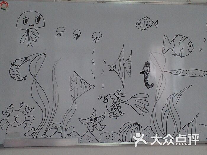 丰富的海底世界简笔画