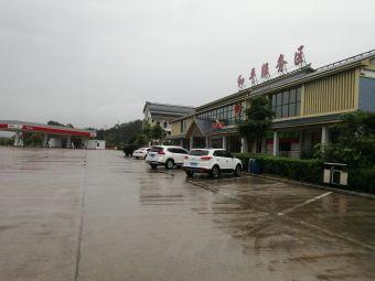 和平服务区-停车场