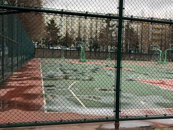 青岛大学篮球场