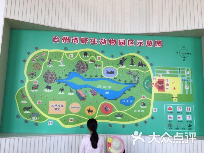 台州湾野生动物园图片 - 第6张