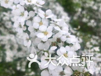 上海植物园3号门售票处