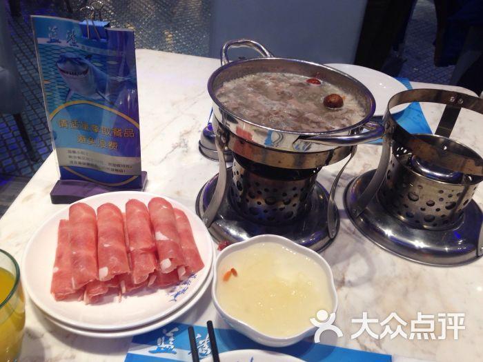 蓝鲨美食点评美食汇-猎人-邯郸图片-大众自助网美食系统小说海鲜下载图片
