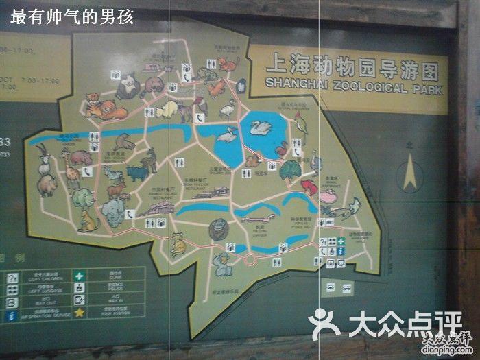 上海动物园dsc00724图片-北京动物园-大众点评网
