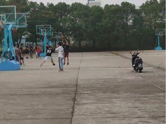 鸟笼篮球场